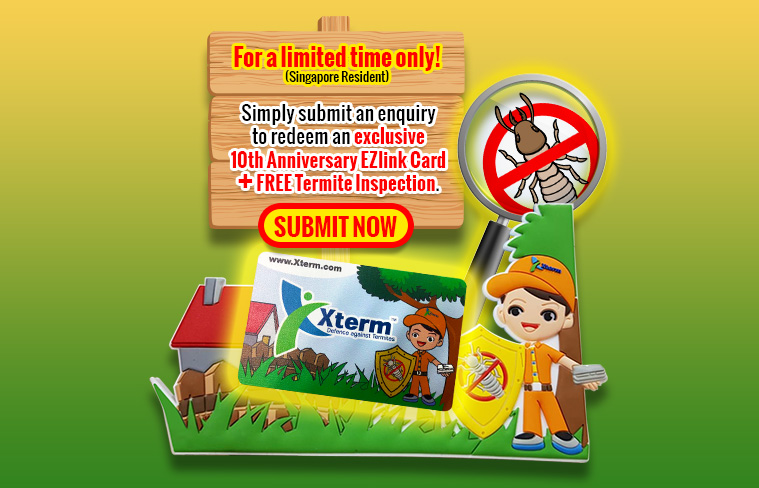Promo - Free EZLink Card and Termite Inspection